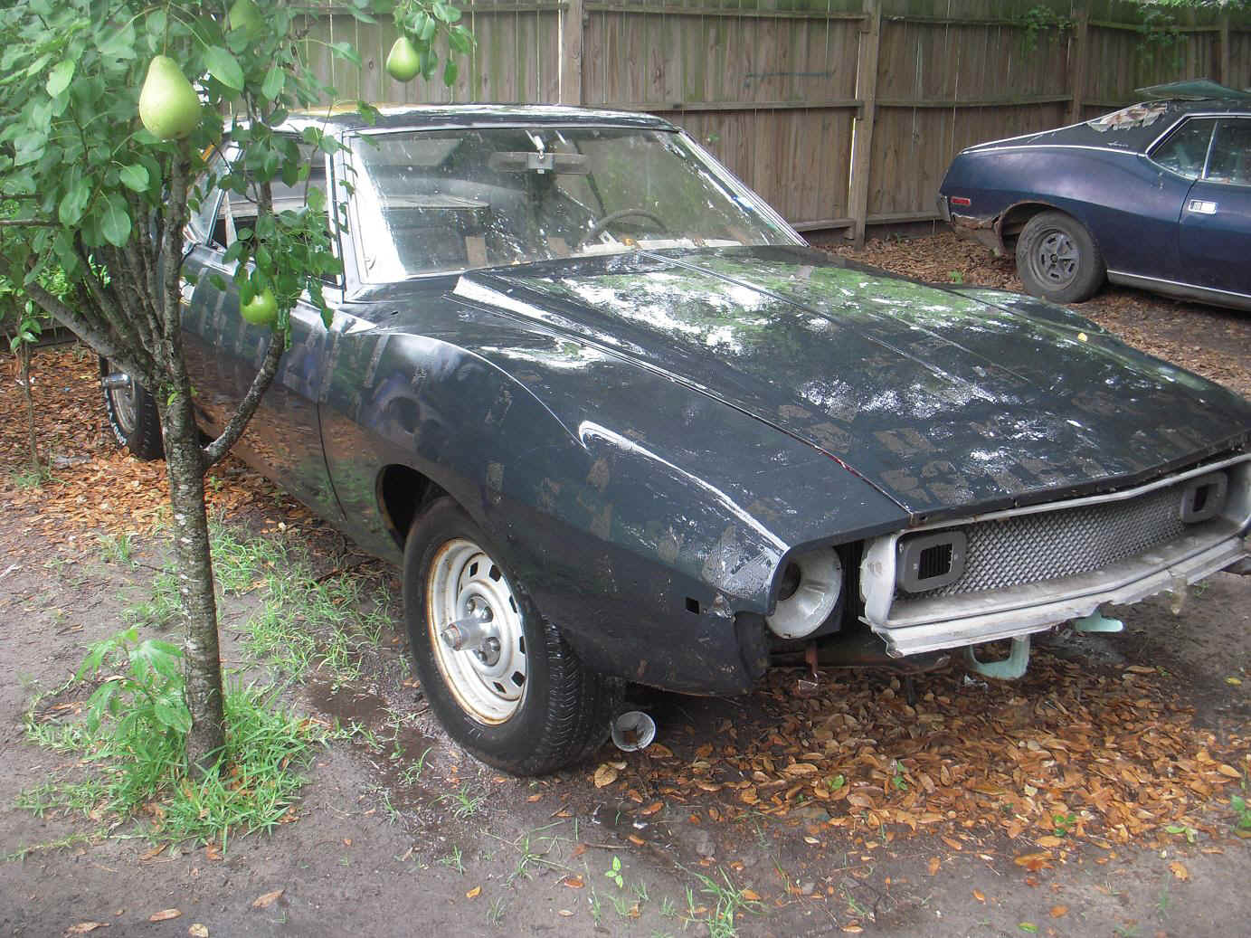74-amc-amx-for-sale-8.jpg (338500 bytes)